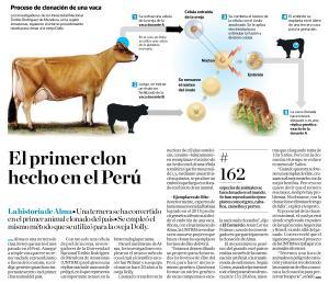 El primer clon hecho en el Perú elcomercio_2016-07-28_#19